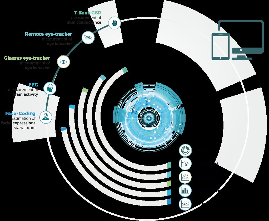Process overview of CAPTIV-NeuroLab software